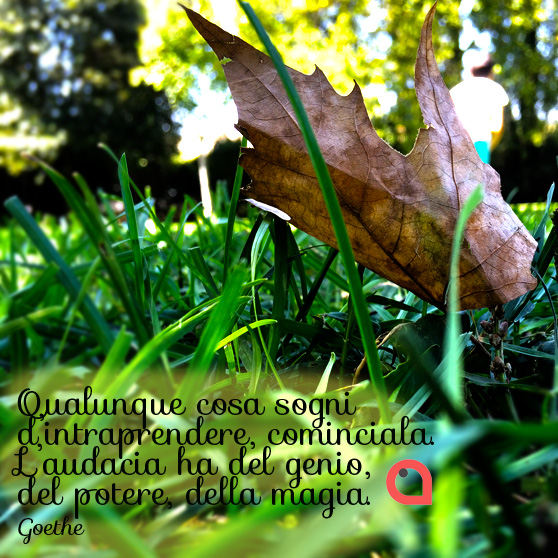 L'audacia ha del genio, del potere, della magia. Goethe